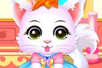 Baby Kitty Salon