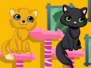 Kitty Beauty Spa