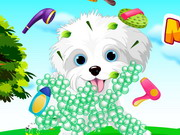 My Puppy Care